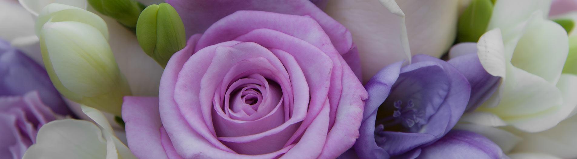 fiori-viola-matrimonio