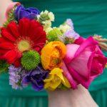 fiori-arcobaleno