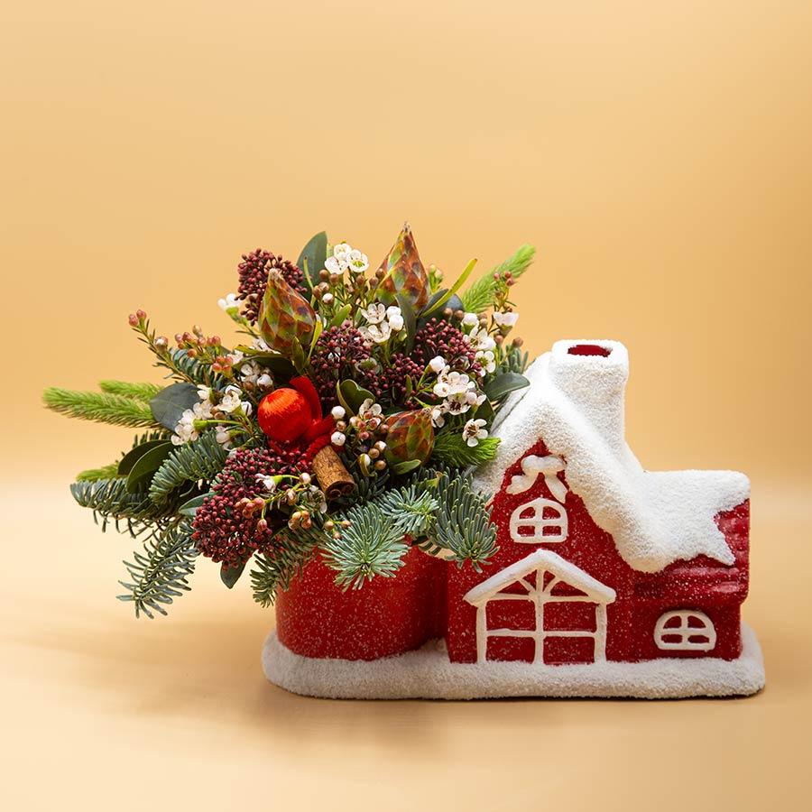 Casetta skimmia - Idee regalo per Natale