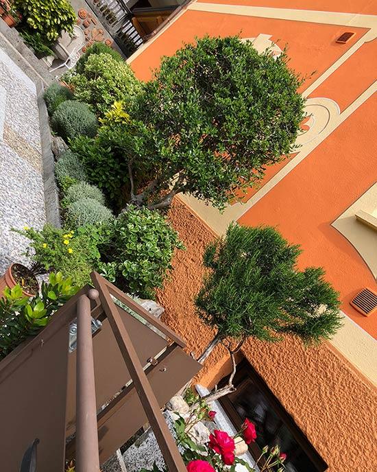 Aiuola giardino aromatico a Pallanzeno