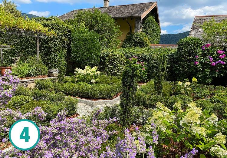 Realizzazione giardino all'italiana a Oira, fase 4