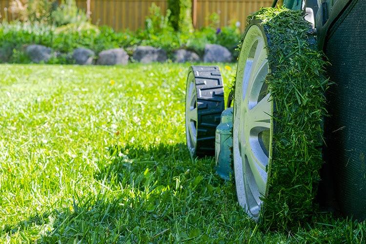 Manutenzione giardini: sfalcio manto erboso
