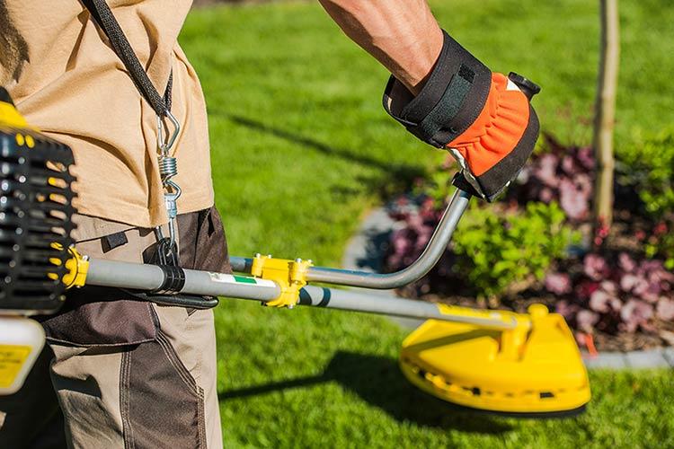 Servizio manutenzione giardini a Omegna