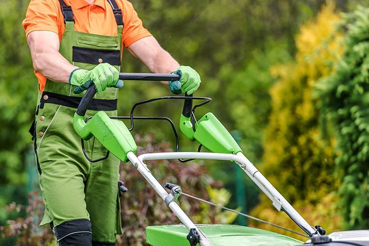 Servizio manutenzione del verde condominiale