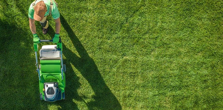 Manutenzione giardini: sfalcio tappeto erboso